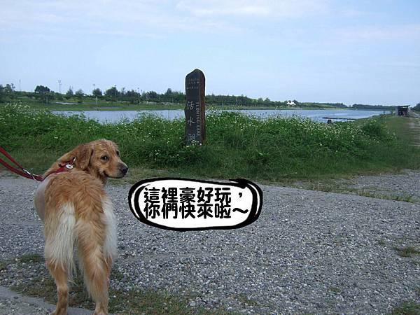 活水湖-11