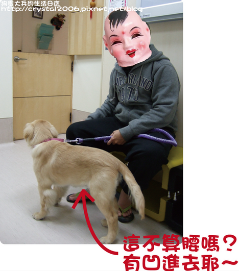 大兵髖關節X光檢查@愛屋-2.png