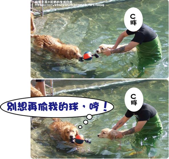 大兵游泳-4.png