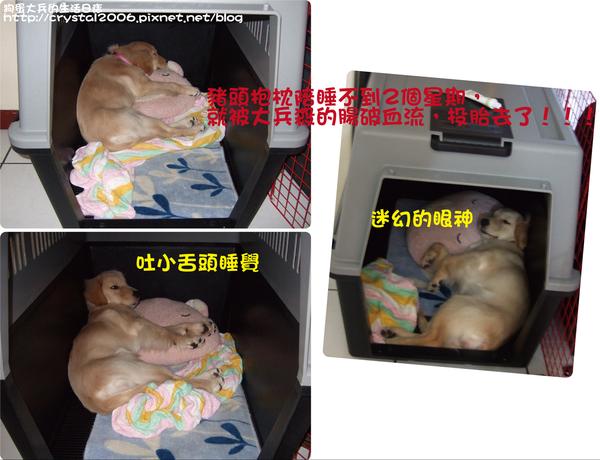 大兵睡姿@運輸籠-1.png