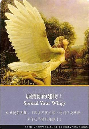 亞列爾-展開你的翅膀.jpg