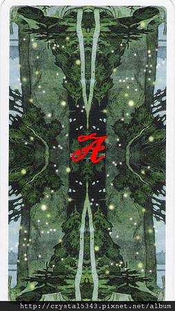 魔法森林牌背  A