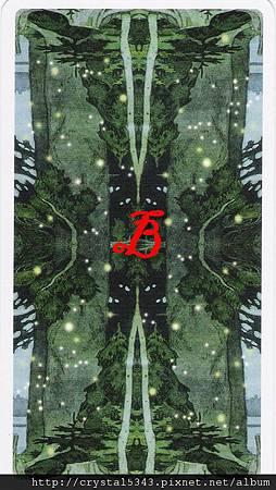 魔法森林牌背  B
