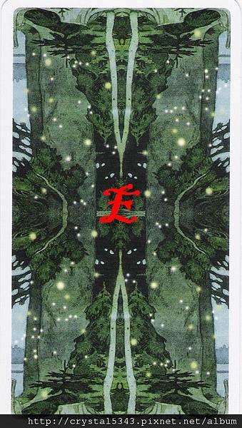 魔法森林牌背E