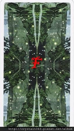 魔法森林牌背F