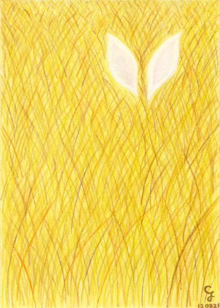 golden_grass@克里斯多插畫森林