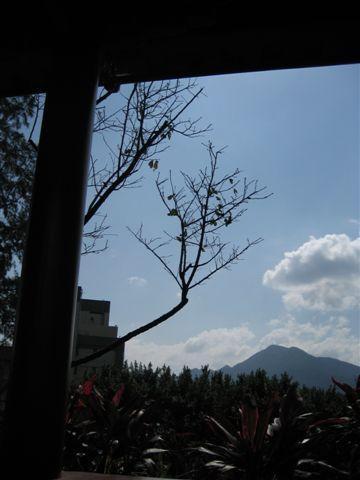 覺軒花園-迴廊-4