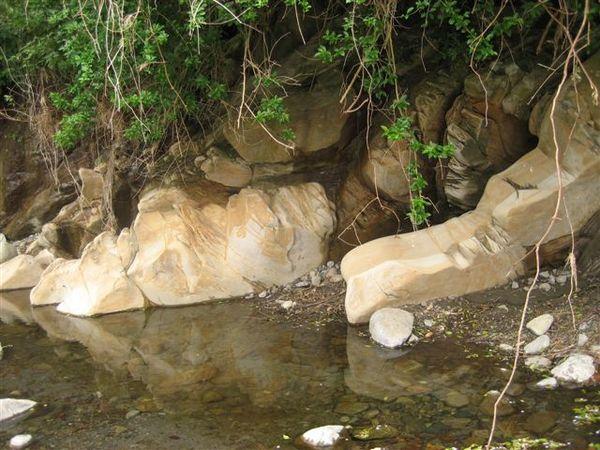 河床旁邊的小水漥