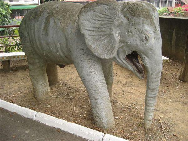 面目猙獰的大象..