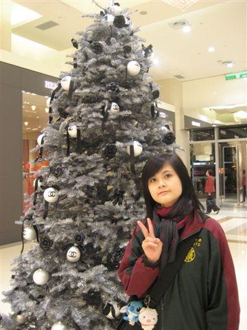 老妹和聖誕樹