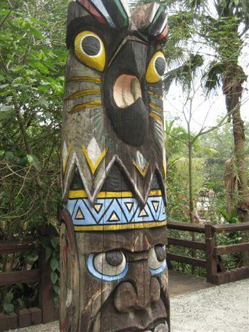 雨林區的裝飾