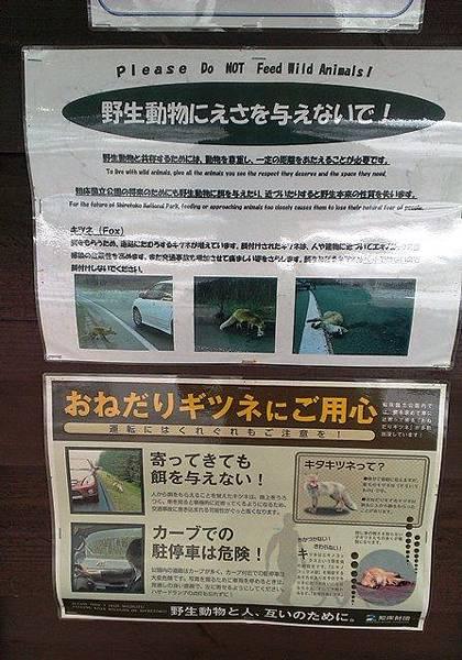 【北海道破冰之旅】知床斜里~釧路鐵道足湯之旅