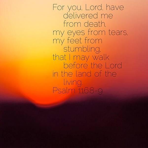 e91ad375e65a45555b9951bbc4eaed32--psalm--verse.jpg