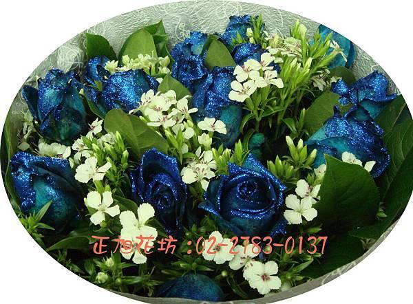 璀璨藍玫瑰02