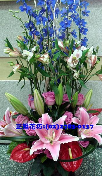 百合火鶴盆花-適合大空間擺放