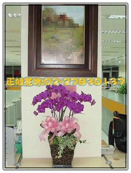 辦公會場-04