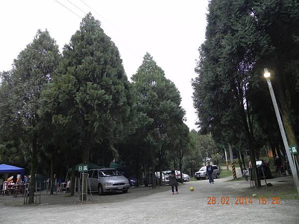 DSCN6337.JPG