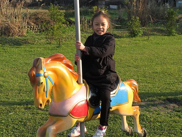 小孩子就是這樣,看到木馬就開心