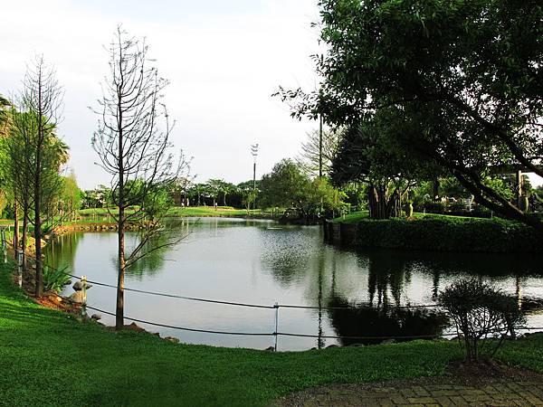 綠風草原的湖.jpg