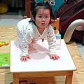 【13M7D】爬到桌上.JPG