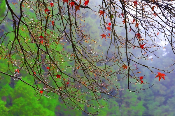 12喜歡秋分的季節_01