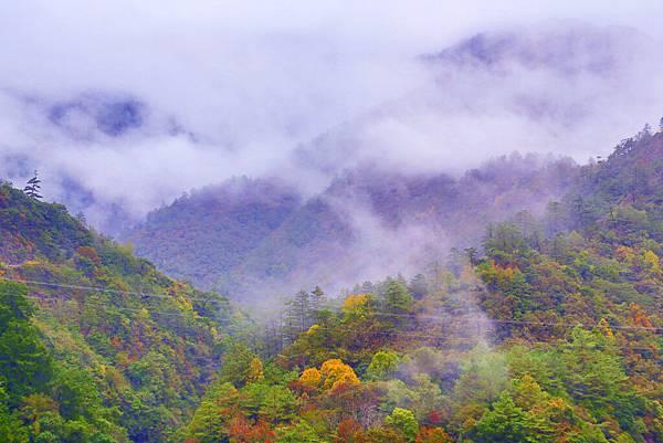 11喜歡秋分的季節 (1)