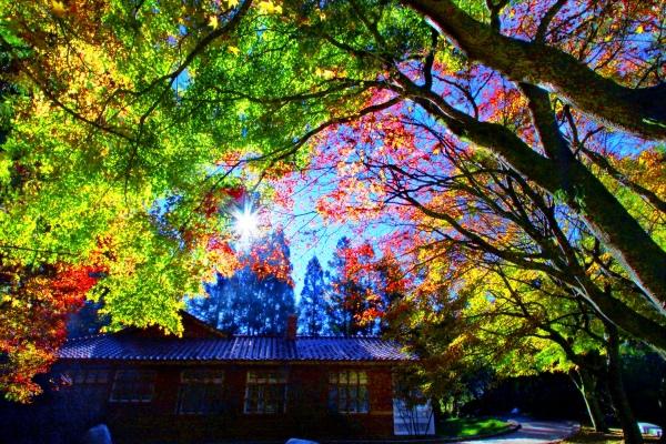 8喜歡秋分的季節 二_01