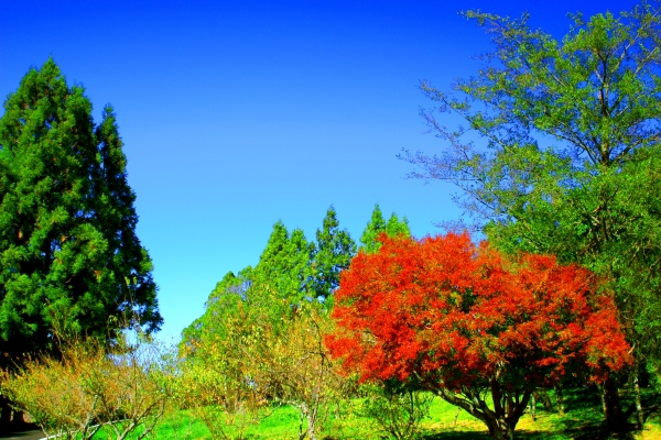 7喜歡秋分的季節 二_01