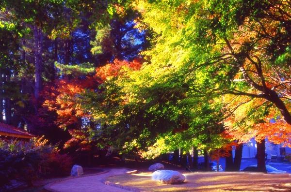 11喜歡秋分的季節 二_01