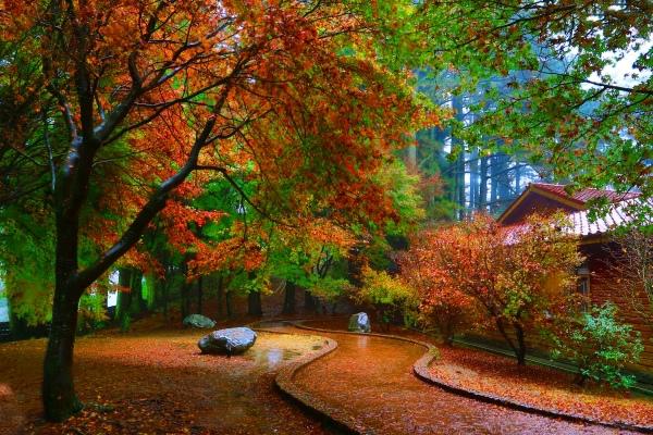 14喜歡秋分的季節 三
