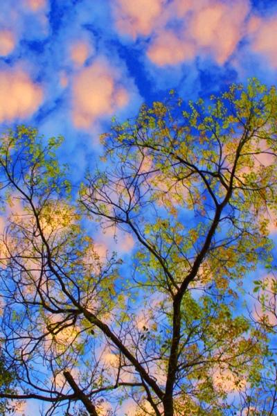 15風歌雲唱山水   總是詩  一