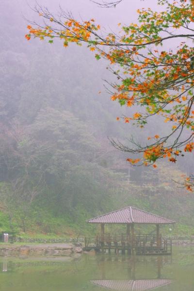 3明池楓紅意境幽邃之美