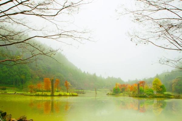 2明池楓紅意境幽邃之美