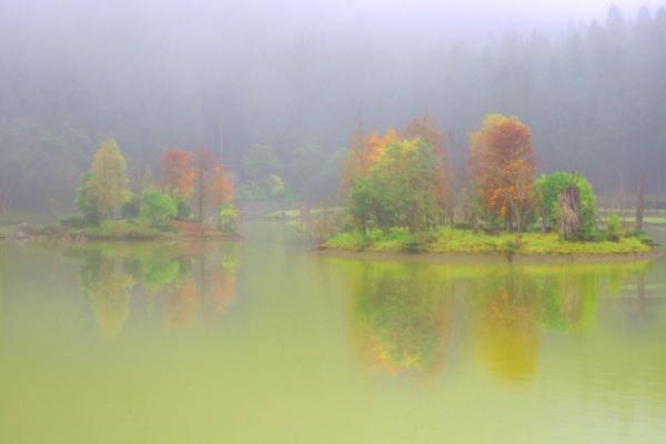 8明池楓紅意境幽邃之美