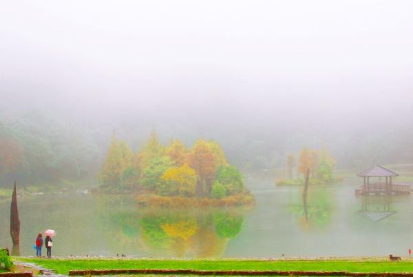 9明池楓紅意境幽邃之美