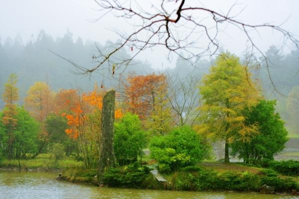 12明池楓紅意境幽邃之美