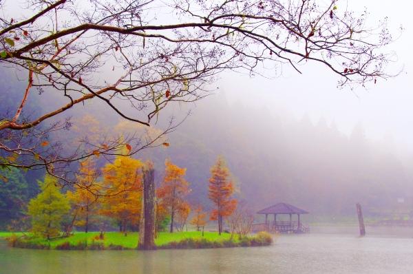 16明池楓紅意境幽邃之美