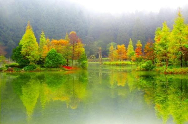 5明池楓紅意境幽邃之美  二