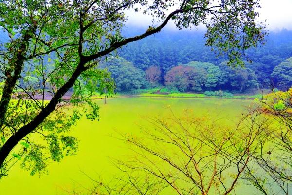 7明池楓紅意境幽邃之美  二