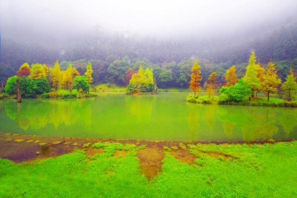 11明池楓紅意境幽邃之美  二
