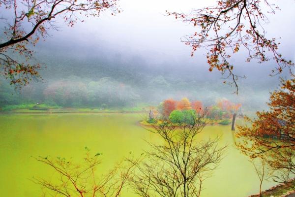19明池楓紅意境幽邃之美  二
