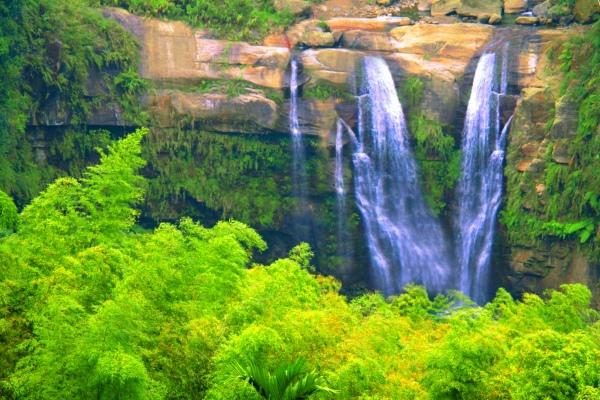 17竹林風韻之美 《二》