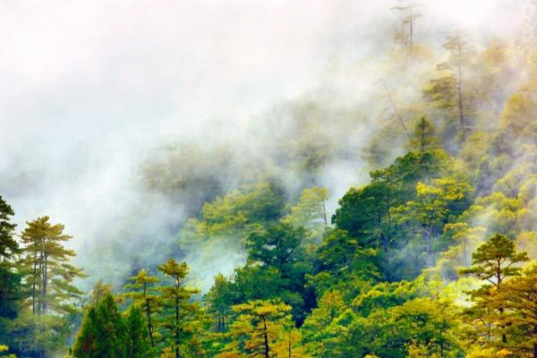 16美麗的秋在山巒上  二_01
