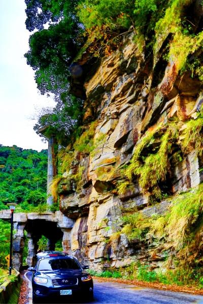4尖石鄉錦屏村 在峽谷與雲端賞楓   一