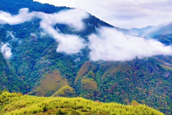 10尖石鄉錦屏村 在峽谷與雲端賞楓   一