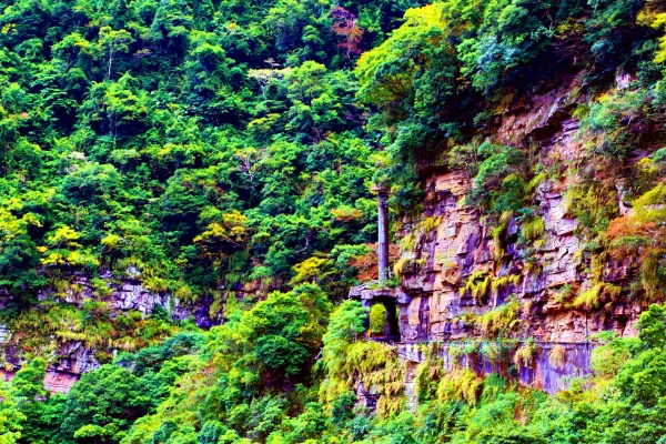 6尖石鄉錦屏村 在峽谷與雲端賞楓   一