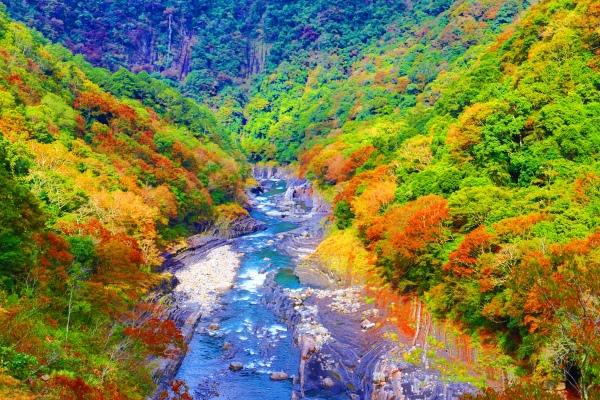 13尖石鄉錦屏村 在峽谷與雲端賞楓   一