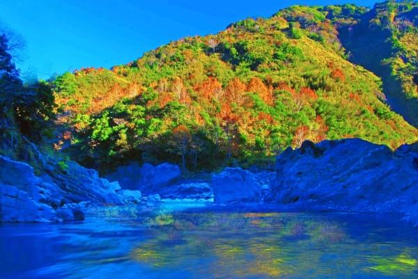 12尖石鄉錦屏村 在峽谷與雲端賞楓   一