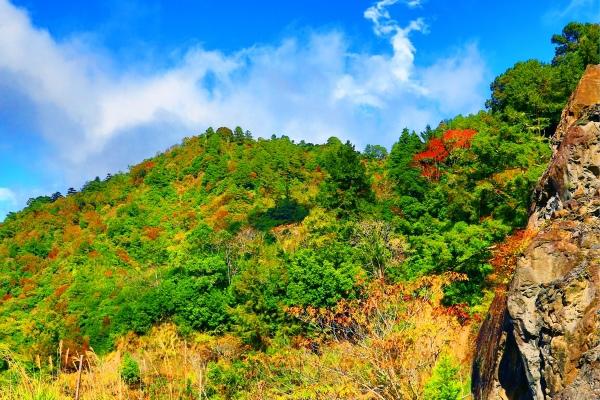 11尖石鄉錦屏村 在峽谷與雲端賞楓   一