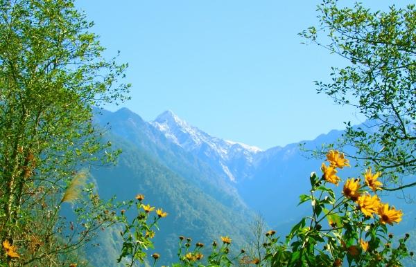 7玉山國家公園     品雪與雲海之美